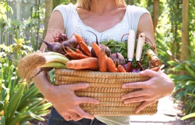 Woman_s hands holding a basket with fresh organic vegetables | Vegetarian and Vegan Explained: A Clear Distinction