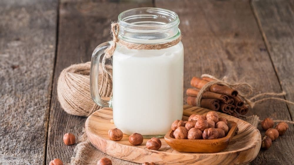 Vegan white milk on a wooden board surrounding with nuts-feature image-ca | 8 Kinds of Vegan Milks and Their Benefits - No Reason For Dairy | feature